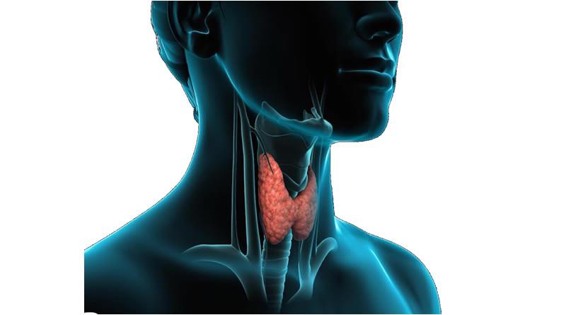 Tiroid Fırtınası (Krizi)